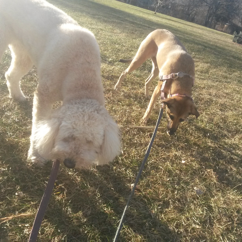 Zoey, Colby