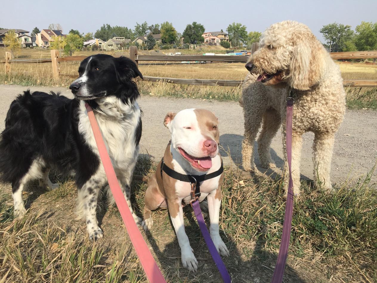 Ruffers, Lou, Zoey