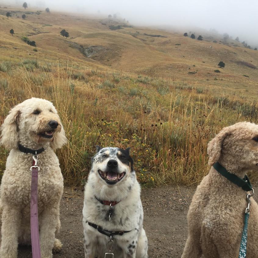 Zoey, Isaac, Milo
