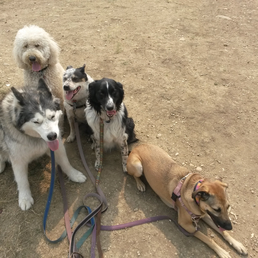 Thompson,Zoey,Isaac,Ruffers,Colby