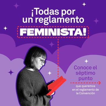 Todas Por Un Reglamento Feminista       punto 7