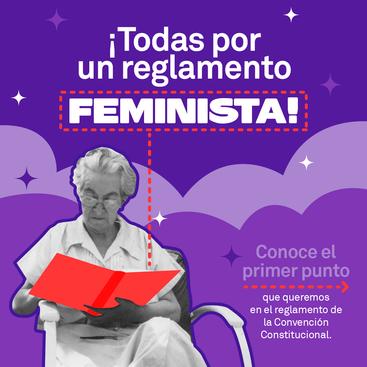 """""""Todas Por Un Reglamento Feminista"""" punto 1"""