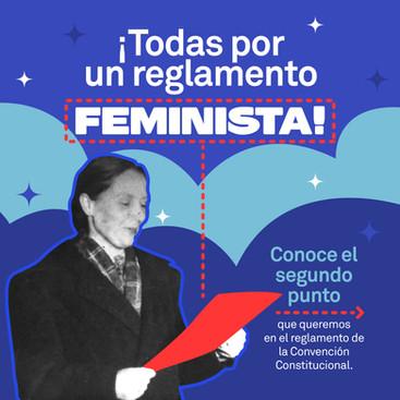 """""""Todas Por Un Reglamento Feminista"""" punto 2"""