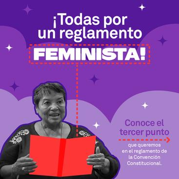 """""""Todas Por Un Reglamento Feminista"""" punto 3"""
