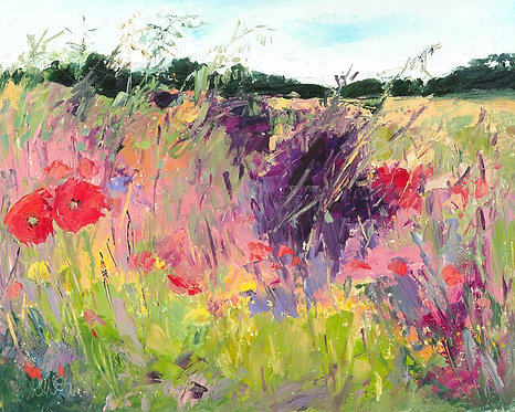 Riot of Colour Field
