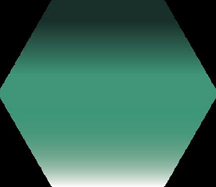 Sennelier - 899 - Vert sapin  - 1/2 godet