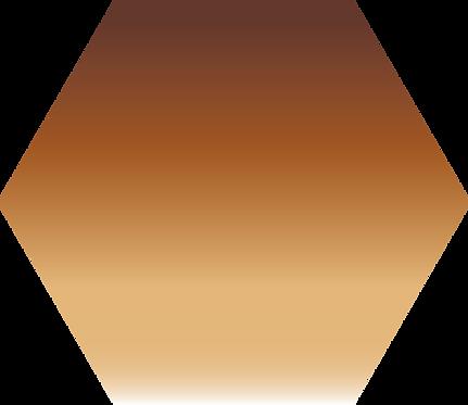 Sennelier - 202 - Terre d'ombre brûlée - 1/2 godet
