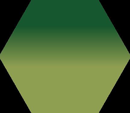Sennelier - 819 - Vert de Vessie - 1/2 godet