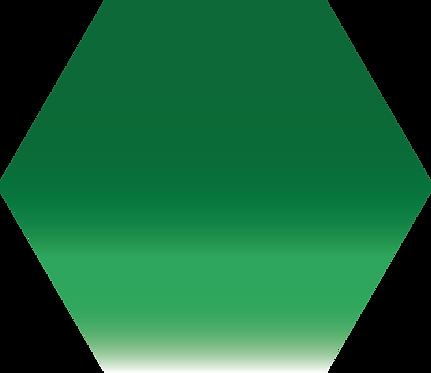 Sennelier - 317 - Vert Sennelier - 1/2 godet