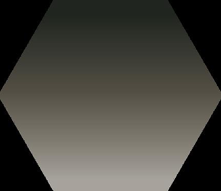 Sennelier - 753 - Noir de bougie - 1/2 godet