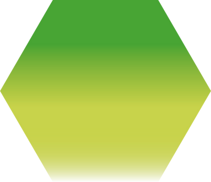 Sennelier - 895 - Vert anglais clair - 1/2 godet