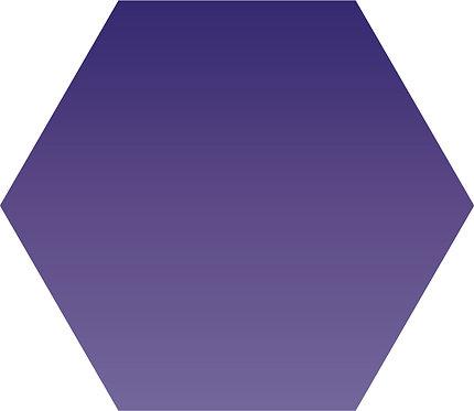 Sennelier - 903 - Violet Bleu - 1/2 godet
