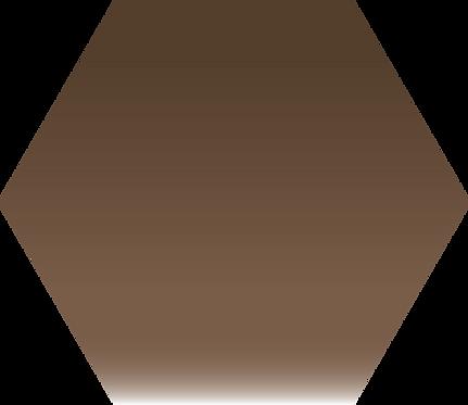 Sennelier - 440 - Sépia coloré - 1/2 godet