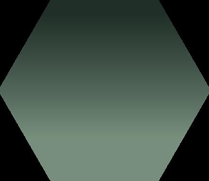 Sennelier - 203 - Terre verte brûlée - 1/2 godet
