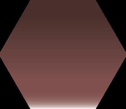 Sennelier - 407 - Brun Van Dyck - 1/2 godet