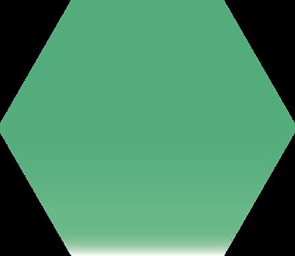 Sennelier - 347 - Vert Véronèse - 1/2 godet