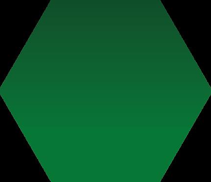 Sennelier - 809 - Vert Hooker - 1/2 godet