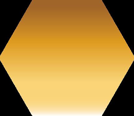 Sennelier - 208 - Terre de Sienne Nat. - 1/2 godet