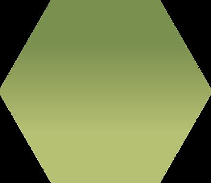 Sennelier - 213 - Terre verte naturelle - 1/2 godet