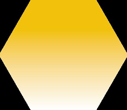 Sennelier - 579 - Jaune Sennelier foncé - 1/2 godet