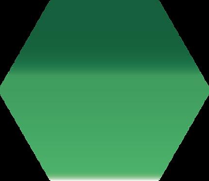Sennelier - 323 - Vert cad. clair - 1/2 godet