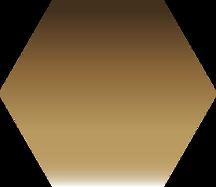 Sennelier - 205 - Terre d'ombre Nat. - 1/2 godet