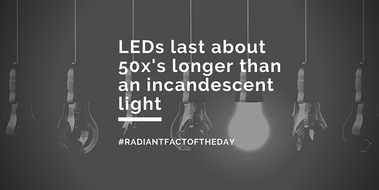 LED Facts Of The Month