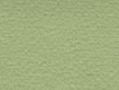 Light green 569