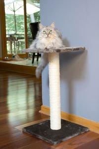 Scratch It! - Sisal Cat Scratching Post