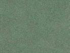 Eucalyptus 4702