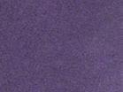 Violet 6601