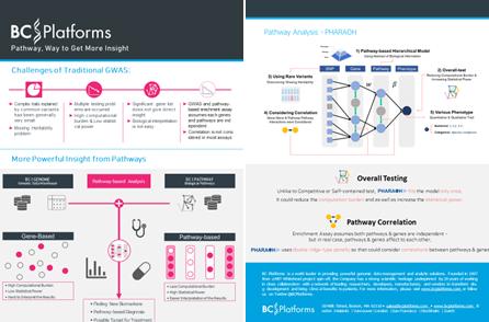 ㈜엑슬리트바이오, 스위스 BC Platforms 사와 협력해 더 정확하고 직관적인 통찰을 제공하는 패스웨이 분석 플랫폼 BC|PATHWAY 공동개발