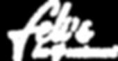 Fei's logo