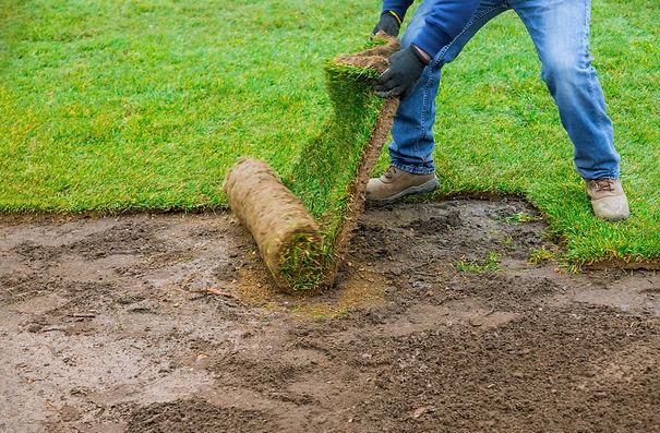 Gräsmatta läggs efter att jordvärme installerats