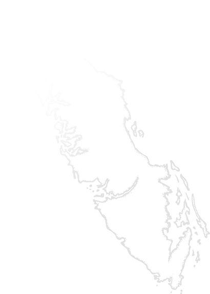 Van Island vector outline.jpg