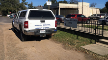 Grant Parish Animal Control Program - A Success