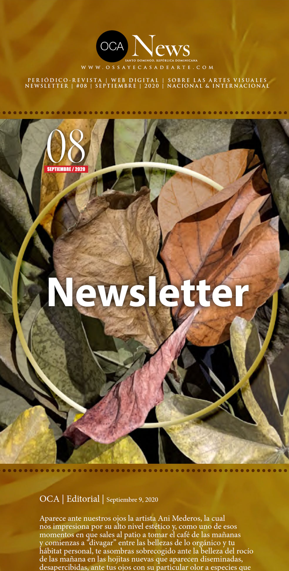 Cover-NewsLetter-08
