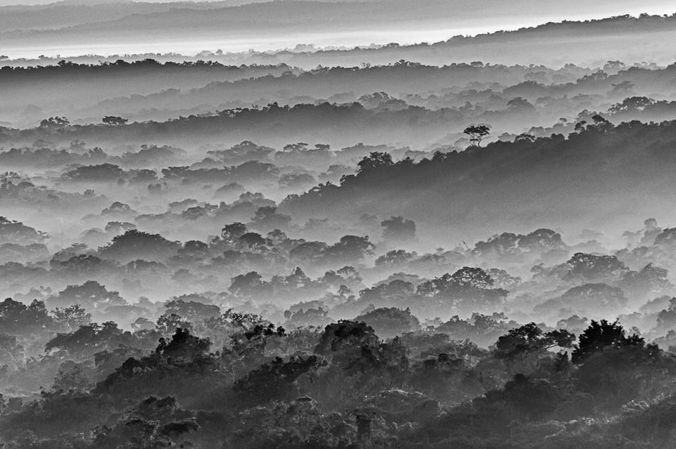 Fetén, Guatemala, 2005. Impresión Giclée / Papel Barytado Tamaño de la Imagen: 22.7 x 34 cms. Tamaño del Papel: 29.7 x 42 cms.