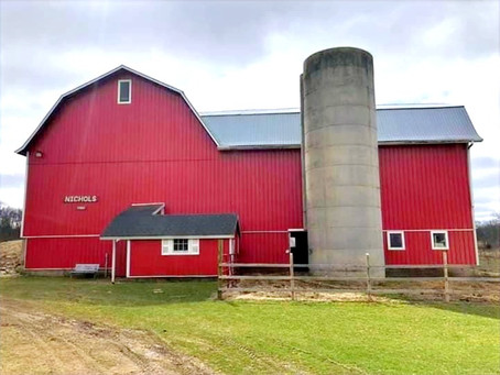 Me and My Big Red Barn