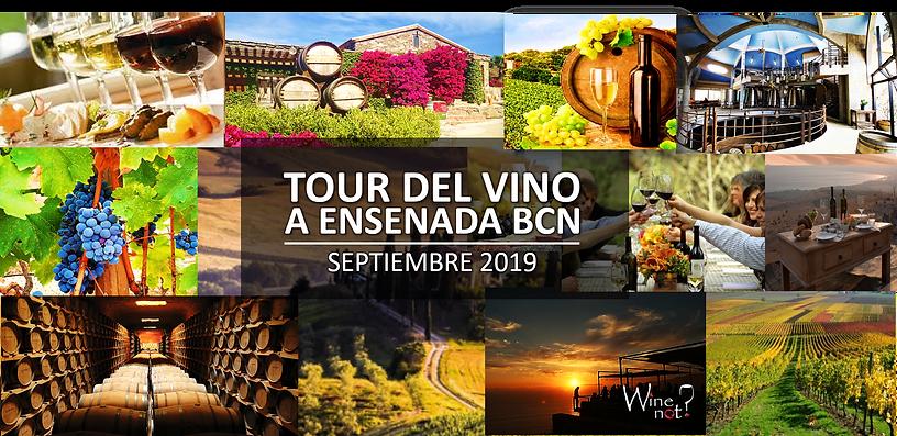 TOUR VINO WINE NOT MEXICO. Viaje enologico a Ensnada. Ruta del Vino.