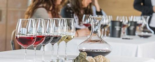 Taller de Enófilos. Curso de Vinos Wine Not México