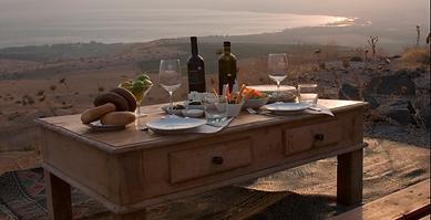 Enoturismo, viajes enológicos. Bodegas Viñedos. Ruta del Vino. Wine Experiences Mexico