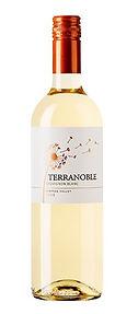 terranoble Sauvignon Blanc.jpg