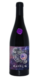 Kayros. Vino tinto frances elaborado por mano mexicana. Uvas carignan, grenache y shira. Wine Not México