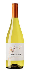 terranoble Chardonnay.jpg
