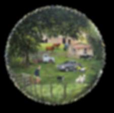 Waikato Farm by Julie Oliver