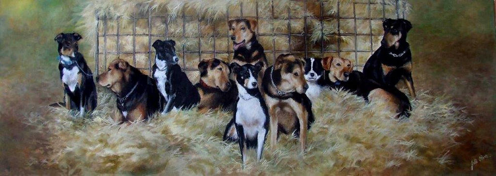 Working Dogs by Julie Oliver