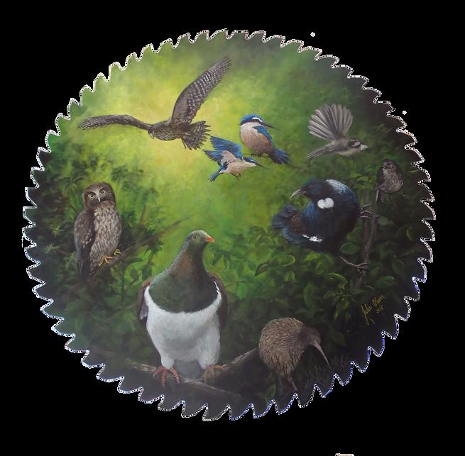 Birds by Julie Oliver