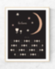 Crescant Moon in frame.jpg