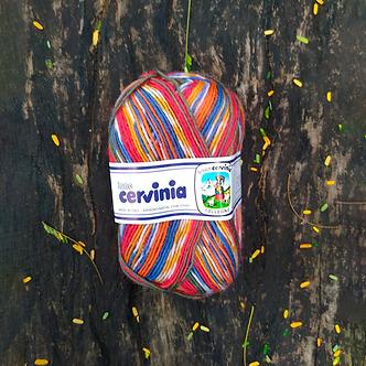 Fio Forever Cervinia